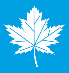 maple leaf icon white vector image vector image