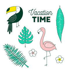 vacation time tropical set vector image vector image