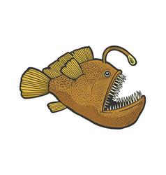 angler deep sea fish with light sketch vector image