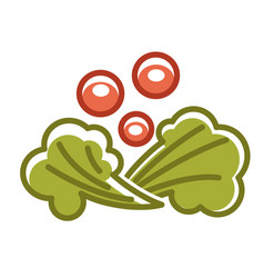 Broccoli and berries vector