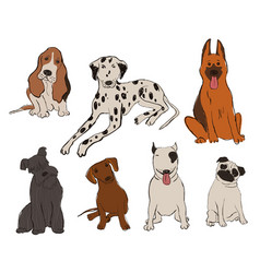 Collection dog breeds icons vector