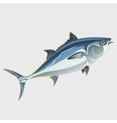 Image of the fish isolated vector image