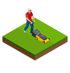 Man mowing lawn with yellow lawn mower in vector
