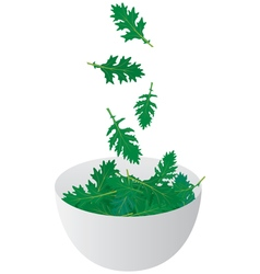 Salad bowl vector