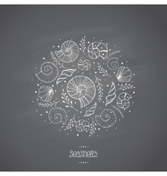 Sea shells in sketch on chalkboard vector
