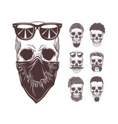 skull in bandanna vector image