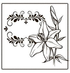floral background for design invitation card vector image