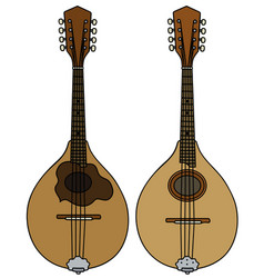 Two classic mandolins vector