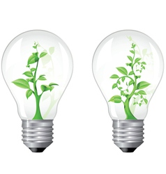 light bulb with sprout inside vector image vector image