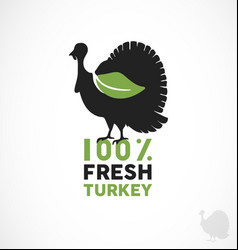 Farm fresh turkey vector