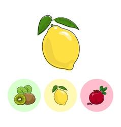 Fruit IconsLemon Kiwifruit Pomegranate vector