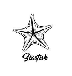 Starfish black ink vector