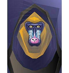 Abstract Ape vector image