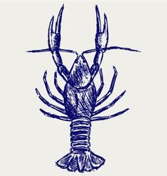 Crayfish sketch vector image vector image