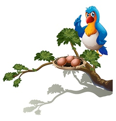 A parrot at the branch of a tree with a nest vector image