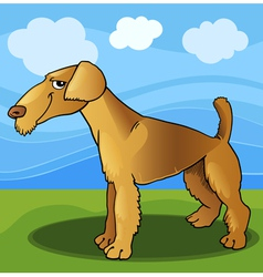 airedale terrier dog cartoon vector image