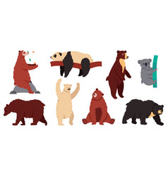 bears species wild mammal characters furry vector image