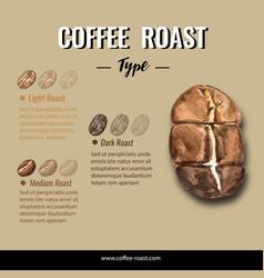 Coffee arabica roast beans burn type infographic vector
