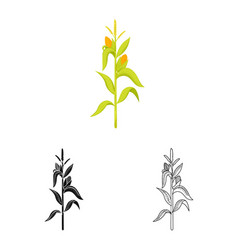 Corn and stalk symbol vector