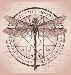 Drawing of dragonfly on an octagonal star vector