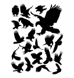 eagle detail silhouette vector image