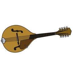 classic country mandolin vector image vector image