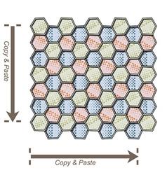 Seamless decorated irregular hexagons vector image vector image