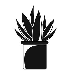 aloe cactus pot icon simple style vector image