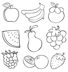 doodle of fruit style hand draw vector image