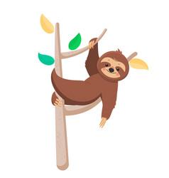 joyful cute cartoon sloth hanging on a branch vector image