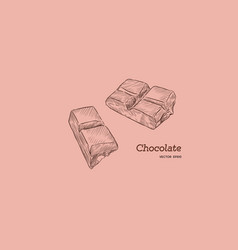 pieces of peanut chocolate bar sketch style vector image