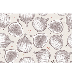 figs seamless pattern hand draw sketch vector image