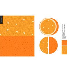 food patterns fruit orange vector image