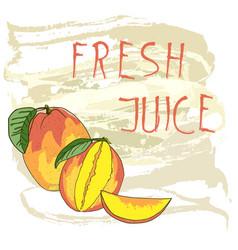 fresh mango juice vector image