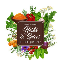 Herbs and spices condiment seasoning vector