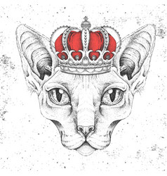 hipster animal sphynx cat in crown vector image