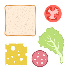 Ingredients for a sandwich on white vector