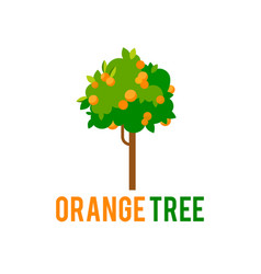 orange tree with fruits tree in a flat vector image