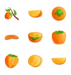Persimmon fruit icon set cartoon style vector