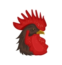 Rooster head with red comb isolated on white vector image