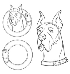 set drawing dog in collar vector image