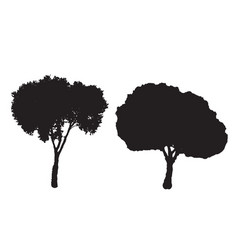 two silhouette trees set vector image