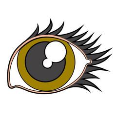 beauty eye image vector image