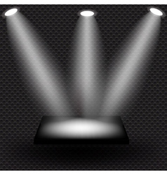 Empty black shelve on metal background with lights vector image vector image