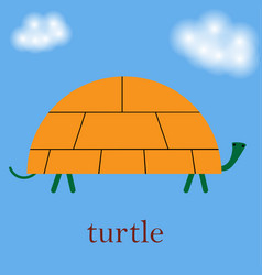cartoon of sea turtle in flat vector image