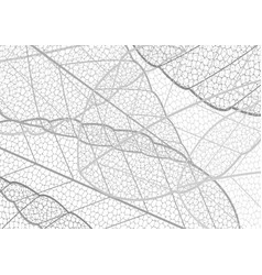 Dried leaf embroidery lace pattern abstract black vector