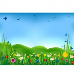 flowering meadow vector image