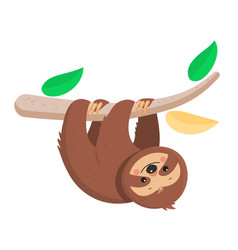 Joyful sloth hanging on a branch vector
