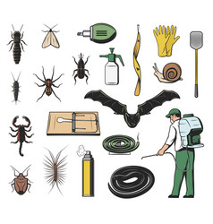 pest insect insecticide and exterminator icons vector image