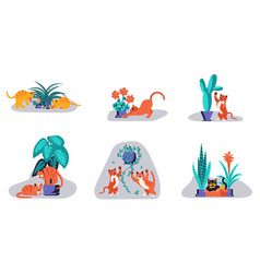set of cute kitten play with houseplant vector image